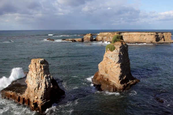 A rocky coastal view from the Point Arena-Stornetta Public Lands